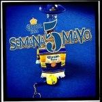 5demayo-Corona